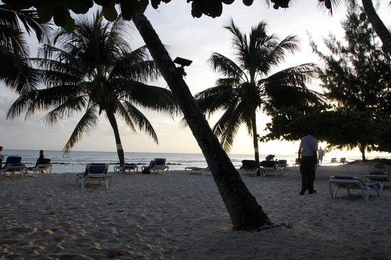 Coconut Court Beach Hotel: Beach