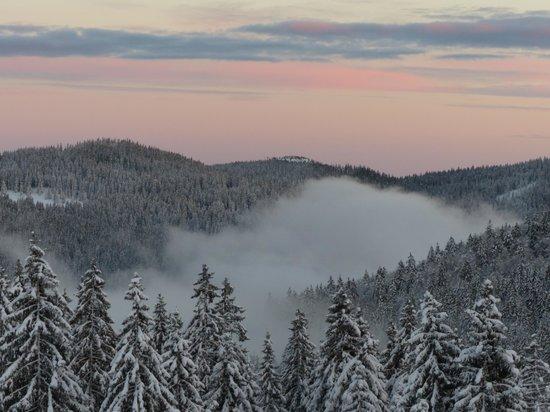 Landhotel Bierhäusle: Winter