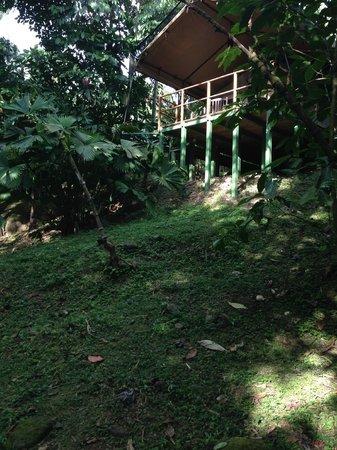 Rio Tico Safari Lodge: Tent photo taken from river below