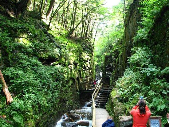 Franconia Notch : flume gorge