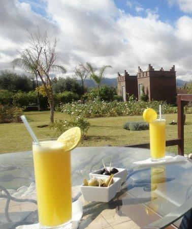 Kasbah Igoudar : jus d'orange maison