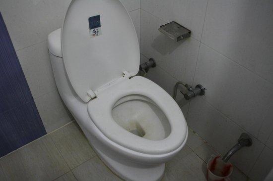 Hotel Shelton: Baño poco higiénico