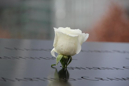 National September 11 Memorial und Museum: White Rose for A Fallen Hero