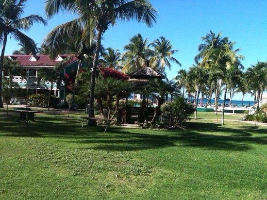 Pineapple Beach Club Antigua: View from garden room :)