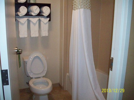 Hampton Inn & Suites Brunswick: Bathroom and shower area