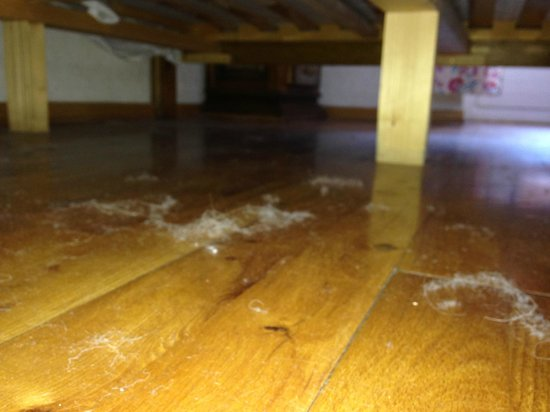 Parc Hotel Posta: polvere sotto il letto al termine della settimana