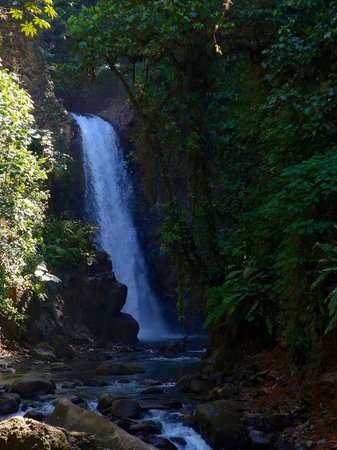 La Paz Waterfall Gardens: First Waterfall (our favorite)
