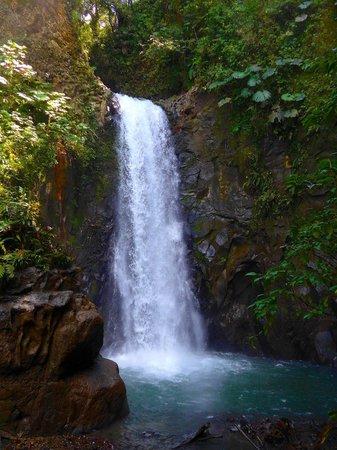 La Paz Waterfall Gardens: First Waterfall again