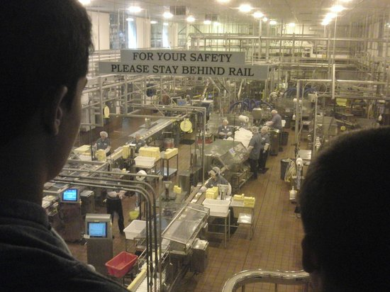 Tillamook Cheese Factory: from the gallery