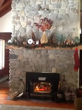 Red Pines Bed & Breakfast: chillin by the fire place