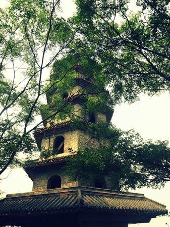 Panlongshan Park