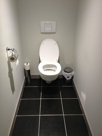 Brit Hotel Saint-Dizier: WC séparé