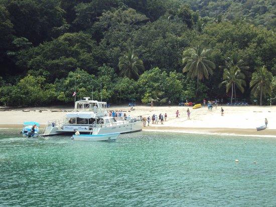 Apartotel La Sabana : Isla La Tortuga