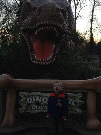 Drayton Manor Park: :)