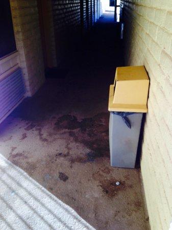La Quinta Inn Wichita Falls Event Center North : Could use a power washer