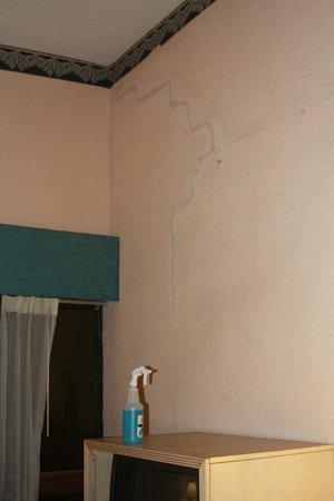 Magnuson Grand Hotel Maingate West : Le mur lézardé