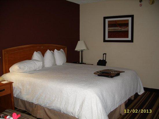 Hampton Inn Newark-Airport : Room - bed