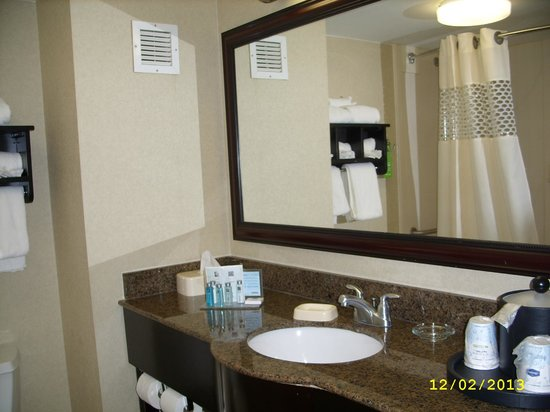 Hampton Inn Newark-Airport: Bathroom vanity