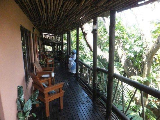 Umlilo Lodge B&B : The front porch