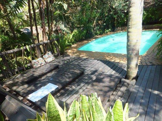 Umlilo Lodge B&B: The swimming pool in the garden