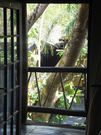Umlilo Lodge B&B : The view from the room entrance