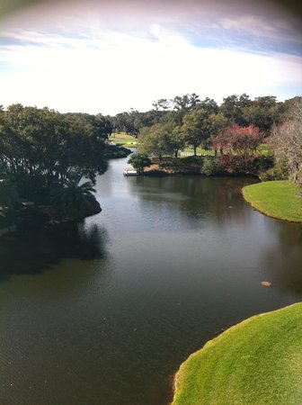 Sawgrass Marriott Golf Resort & Spa : beautiful view