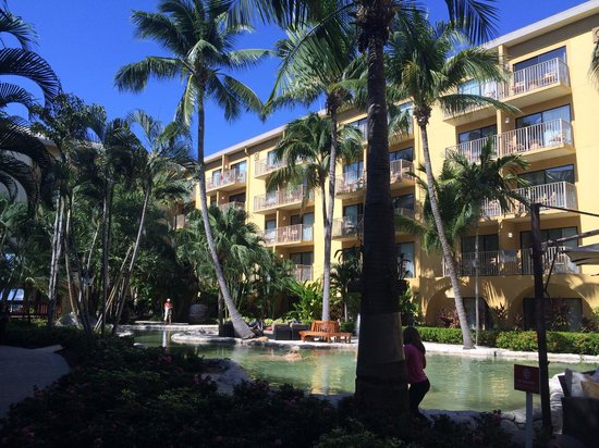 The Westin Grand Cayman Seven Mile Beach Resort & Spa : view