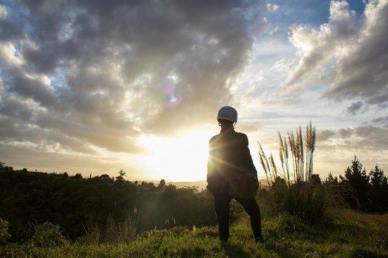Horse Trek'n: Sunset at Te Puke Cones