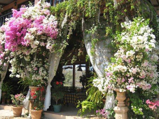 Entrance to the gift shop restaurant picture of vallarta - Puerto vallarta botanical gardens ...