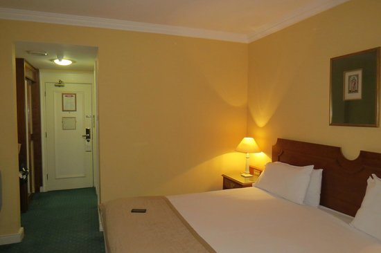 Grafton Capital Hotel: Room