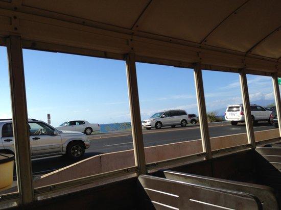 Sugar Cane Train : View fron the train!