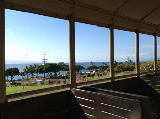 Sugar Cane Train : View from the train!