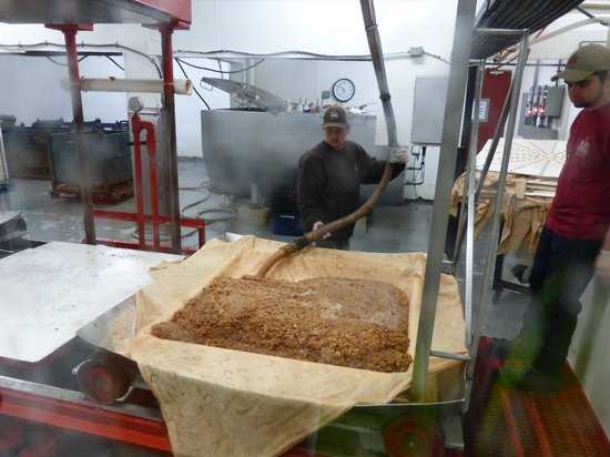 Cold Hollow Cider Mill: workers putting the apple on the pressor