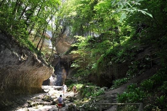 Parco delle Cascate: parte da trilha