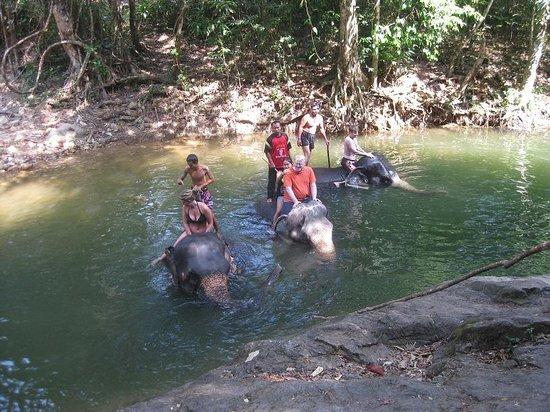 Ban Chang Thai - Elephant Camp: take a bath