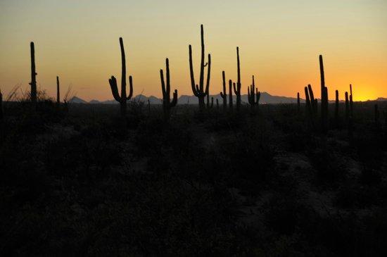 Tanque Verde Ranch: tramonto nel deserto
