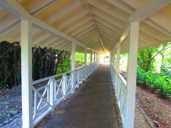 Grand Palladium Lady Hamilton Resort & Spa: Walk to Poseidon/Sunset Cove