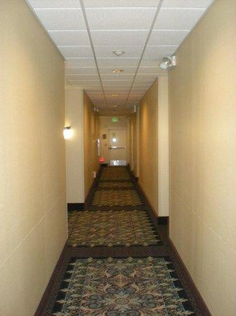 Staybridge Suites San Antonio Sea World: hallway