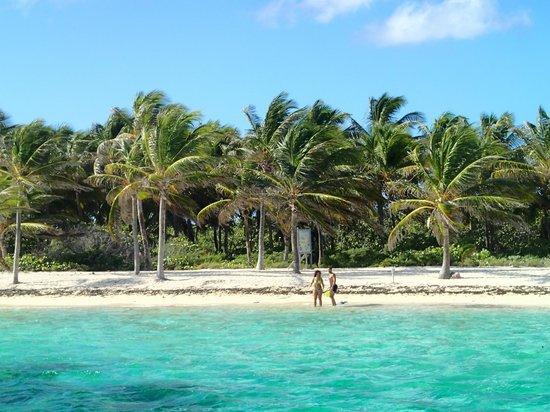 Petite Terre: la plage