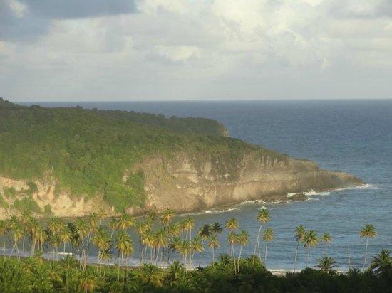 Zamaca Bed & Breakfast: Waves on cliffs