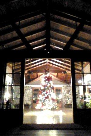The Lodge and Spa at Pico Bonito : Holiday trimmings at the main lodge