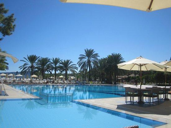 Club Med Palmiye : palmiye