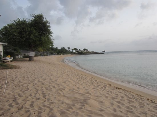 Hawksbill by Rex Resorts: Royal Palm (1st) Beach