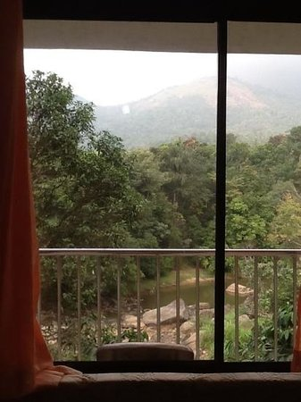 River Rock HomeStay: view from our bedroom in River Rock