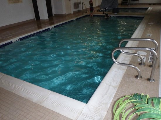DoubleTree by Hilton Hotel Pittsburgh Airport : The pool