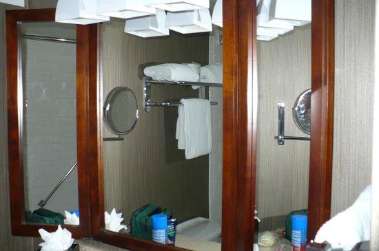 Sheraton Tampa Riverwalk Hotel: Bathroom mirror