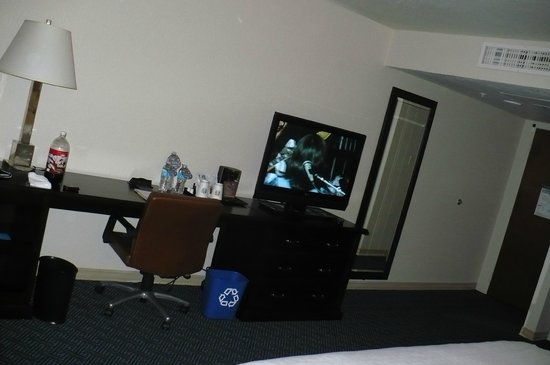 Sheraton Tampa Riverwalk Hotel : Room 614
