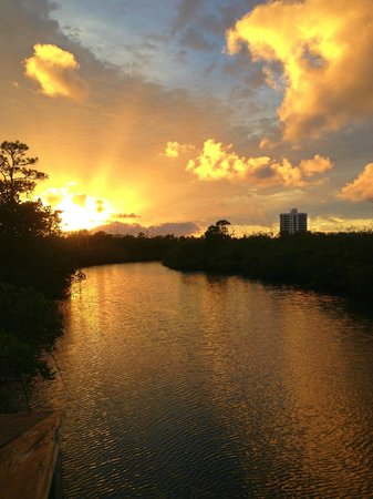 Best Western Intracoastal Inn : take a left to the nature preserve