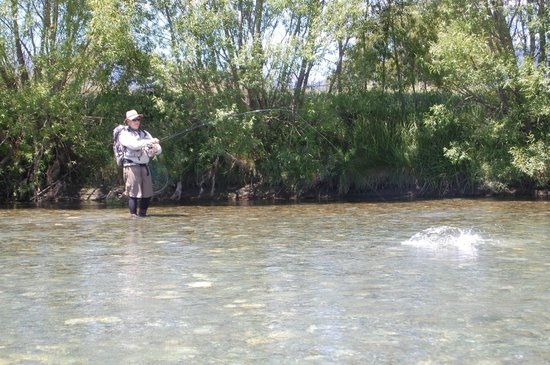 New Zealand Guided Fly Fishing - Tours