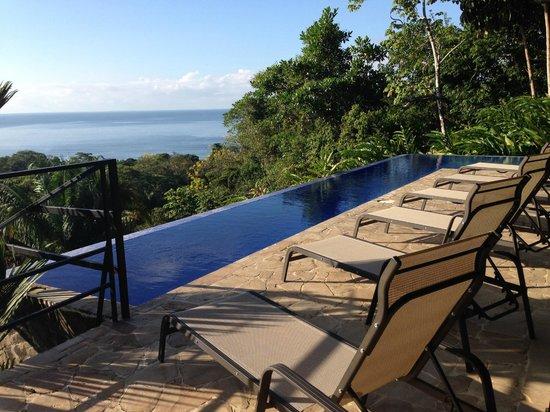 TikiVillas Rainforest Lodge: pool